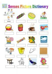 English worksheet: Senses Picture Dictionary