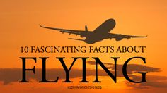 10 Fascinating Facts About Flying Fascinating Facts, First Step, Cleaning Wipes, Fun Facts, Aircraft, Surface, How To Remove, Love You, Movie Posters
