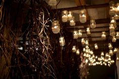 lights.jars.twigs.