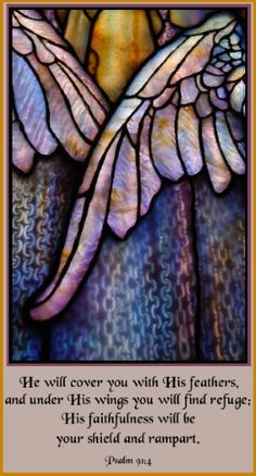He will cover you with His feathers, and under His wings you will find refuge; His faithfulness will be your shield and rampart. ~Psalm 91:4
