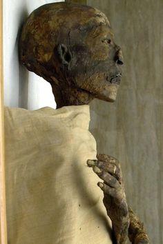 Mummification Process, Ancient Egypt Pharaohs, Canopic Jars, Egypt Mummy, Egyptian Mummies, Anubis, Male Face, In The Flesh