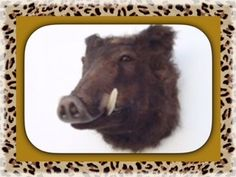 """Life Size Wild Boar Head Wall Mount Display is Handcrafted from Resin and Faux Fur. Large Wild Boar Head Measures Approx 21"""" x 17"""" x 18"""" and Weighs Approx 20 lbs. This realistic looking head mount will be the center of attention and a hot topic of discussion. Has great detail and characteristics. SHIPPING IS INCLUDED IN PRICE! Order today."""