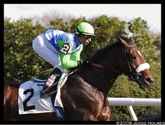 || lentenor, barbaro's handsome full brother. he was officially retired from racing on october fourth, 2012