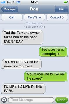 Ted the Terrier's owner takes him to the park EVERY DAY.