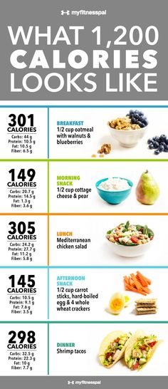 What 1,200 Calories Looks Like [Infographic] | MyFitnessPal