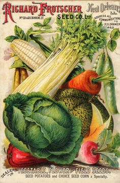 Gorgeous seed packet. Reminds me of the beautiful seed packets my grandparents bought to use to plant in their vegetable garden.