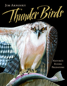 Acclaimed naturalist and illustrator Jim Arnosky helps birds and imaginations take glorious flight in this breathtaking nonfiction picture book with six giant gatefolds. Reptiles And Amphibians, Mammals, Children's Book Awards, Owl Wings, University Of Calgary, Bird Book, Nature Artists, Books For Boys, Birds Of Prey