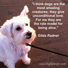 Gilda was right!
