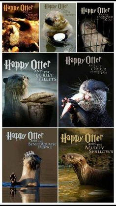 Happy Otter, the series : Otters