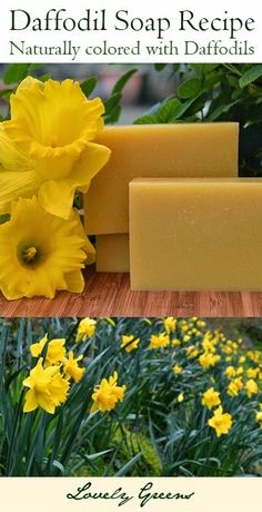 Naturally color handmade soap yellow with Daffodil flowers