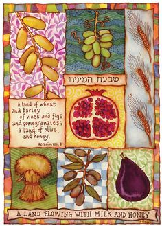 Google Image Result for http://www.aprilstewartklausner.com/images/portfolio/judaic/(Shevat-Haminim)-Notecard.jpg