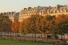 Jardin des Tuileries - Paris (France)