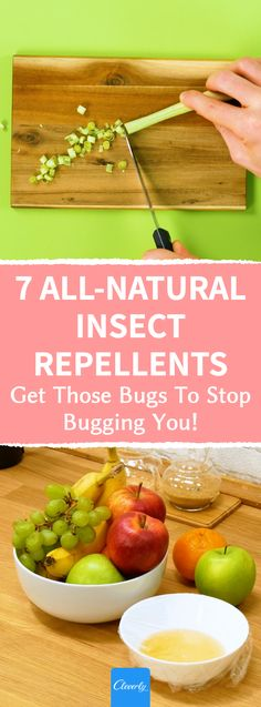 7 All-Natural Insect Repellents | #cleverly #diy #tips #tricks #hacks #fyi #dyk #tipsandtricks #lifehacks #householdpests #householdpestcontrol #insects #insectrepellent #insectrepellentspray #allnatural #ecofriendly #ecofriendlyliving #ecofriendlyhome #homemadebugspray #householdtips #easytomake #homesweethome #homeandgarden #homehacks #diybugspray #diybugrepellent #householdmanagement #bugremoval #homemadeinsectrepellent #goodbyechemicals Homemade Bug Spray, Insect Repellent Spray, Household Pests, Pest Control, Serving Bowls, Insects, Lifehacks, Tricks, Natural