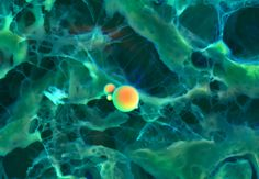 DDC-SEM of calcified particle in cardiac tissue - orange.jpg