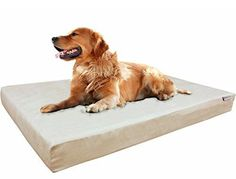 Dogbed4less XL Orthopedic Gel Cooling Memory Foam Dog Bed with Khaki Suede Cover, Waterproof Case and Extra Pet Bed Cover, (Fit Crate) 47X29X4 48X30 #cooldogbeds
