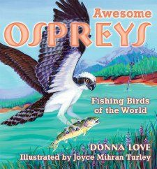 Awesome Ospreys: Fishing Birds of the World: Donna Love, Joyce Mihran Turley: 9780878425129: Amazon.com: Books