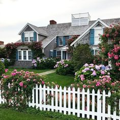 Hydrangea bushes, white pickets and pretty blue shutters make curb appeal magic! Nantucket Cottage, Cottage Style, Nantucket Style Homes, Nantucket Island, Beautiful Homes, Beautiful Places, Blue Shutters, Beach Cottages, My Dream Home