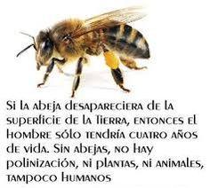 Resultado de imagen de poesia sobre las abejas