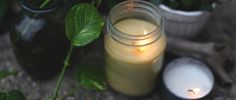 DIY Citronella Candles- How To Make Citronella Candles | Free People Blog