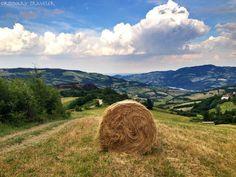 Castles and Vineyards in Emilia Romagna - Ordinary Traveler