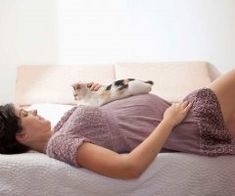 Many pregnant women avoid their own cats for months out of fear of toxoplasmosis. Although it's easily transferred between cats, transferring from cat to human is unlikely. Maternity Pictures, Pregnancy Photos, Infant Pictures, Baby Pregnancy, Breastmilk Storage Bags, After Baby, Baby Arrival, Pregnant Mom, Having A Baby