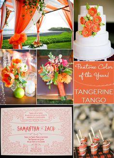 wedding color palettes bright orange tangerine 2012 color of year