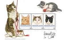 Postset Franciens katten 4
