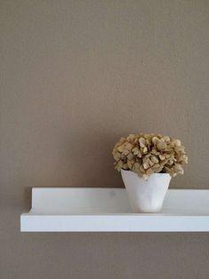 Le tonalit naturali dall 39 avorio al beige al color for Pareti avorio perlato