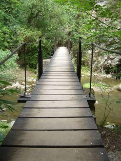 Tordai-hasadék: Keskeny utak, farönkökből készült függőhidak, vízesések teszik kalandosabbá túránkat. Forest Path, Beautiful Forest, Garden Bridge, Paths, Sidewalk, Outdoor Structures, Nature, Naturaleza, Side Walkway