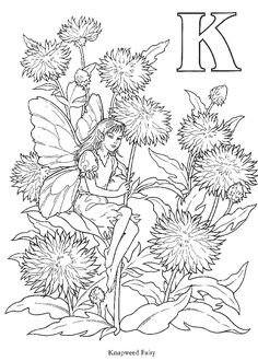 I loved the Flower Fairies as a child... this is the letter K coloring page....