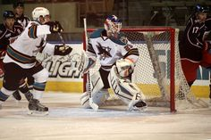 Worcester Sharks goaltender Aaron Dell keeps his eyes on the puck (Nov. 28, 2014).