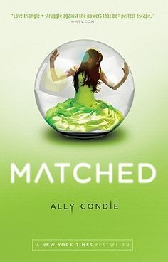matched by ally condie. read it in 4 hours. fabulous.