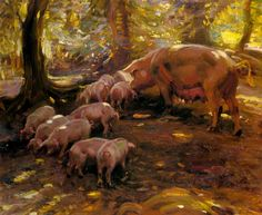 Pigs In A Wood Cornwall - Alfred James Munnings - oil painting reproduction…