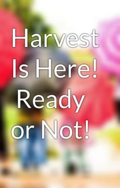 """Read """"Harvest Is Here!  Ready or Not! - Untitled Part 1"""" #wattpad #non-fiction"""