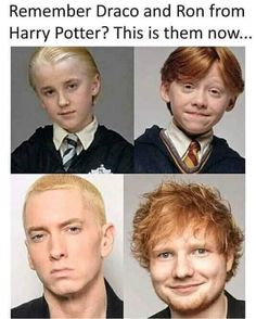 If anyone beleives this its actually eminem and ed sheeran Harry Potter Jokes, Harry Potter Pictures, Harry Potter Fandom, Eminem Funny, Eminem Memes, Eminem Quotes, Tom Felton, Dr Who, Ed Sheeran Memes