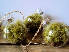 Set of Three Woodland Moss Bauble Ornaments - Rustic Decor - Acorn Cap Tree Decoration - Woodland Wedding - Fairy Ball - Mossy Nature Orb
