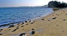 Béninze, dans le Golfe du Morbihan, en Bretagne