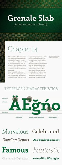 Grenale Slab adds to the the new standard of elegance within the Grenale family. Not your typical slab, Grenale has some unique forms that give it a look all Jeremy Dooley, Lettering, Typography, Slab Serif Fonts, Small Caps, Cool Fonts, Glyphs, Creativemarket, Ads