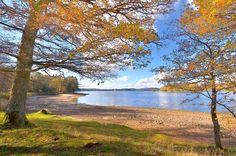 Le Morvan en automne.
