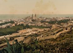 La vista de la Finca de Cuyas, con el Barrio de Triana al fondo, desde lo alto, en los años 1893, fotografo Carl Norman, archivos de la FEDAC, Id nº 3665, en Las Palmas de Gran Canaria