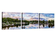 Hafeez Center Decor Art - Framed Canvas Print Wall Art Sk... https://www.amazon.com/dp/B071R6BXYN/ref=cm_sw_r_pi_dp_x_jrL7ybV55GQSR