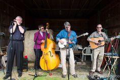 "King Street Bluegrass  Robert Swain- banjo, John Georgiou- guitar, Roger Hart- harmonica, ""Fiddlin' Stacey Rae"" Sinclair, Nancy Lisi- bass  email: kingstreetbluegrass@yahoo.com  phone; (703)531-9945"
