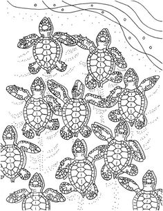 baby sea turtles coloring page embroidery pattern sea turtle art digital download adult coloring page coloring page pdf pattern