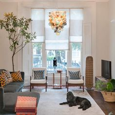 The star of the show might be the high ceilings. It might be the lovely large windows overlooki...