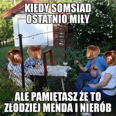 Polish Memes, Cursed Images, Wtf Funny, Im In Love, Best Memes, Fun Facts, Haha, I Am Awesome, Geek Stuff