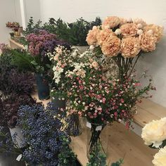 Photo August 20 2019 at Crop Tops Inspiration Etsy Jeans All Black Jackets Simple Olivia Palermo Girls Heels Articles Hair Colors Classy New York Flowers Nature, My Flower, Beautiful Flowers, Fresh Flowers, Wild Flowers, Small Flowers, Spring Flowers, Plants Are Friends, No Rain