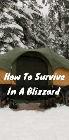This outstanding post will show you how to survive in a blizzard.