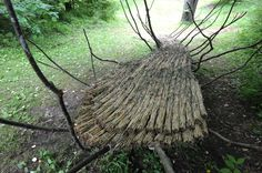 A map directory of Chris Booth works globally. Environmental Sculpture, Fungi, Ontario, Earth, Sticks, Artist, Plants, Canada, Mushrooms