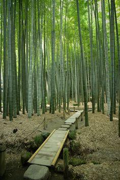 Kamakura, Kanagawa Prefecture | Japan