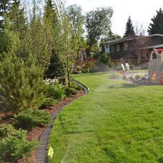 Small Yard with spruce trees. Could do in the front or back yard